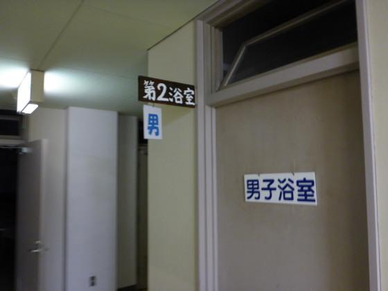 P1310133.jpg