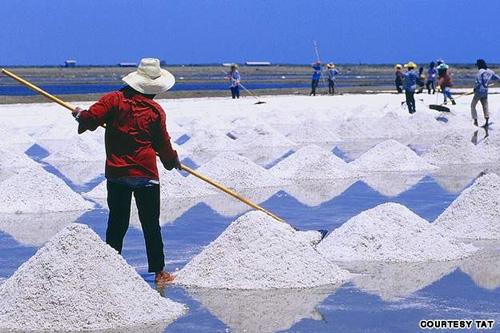 06-salt.jpg