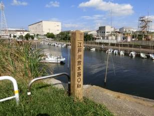 14.09.13 江戸サイ 003