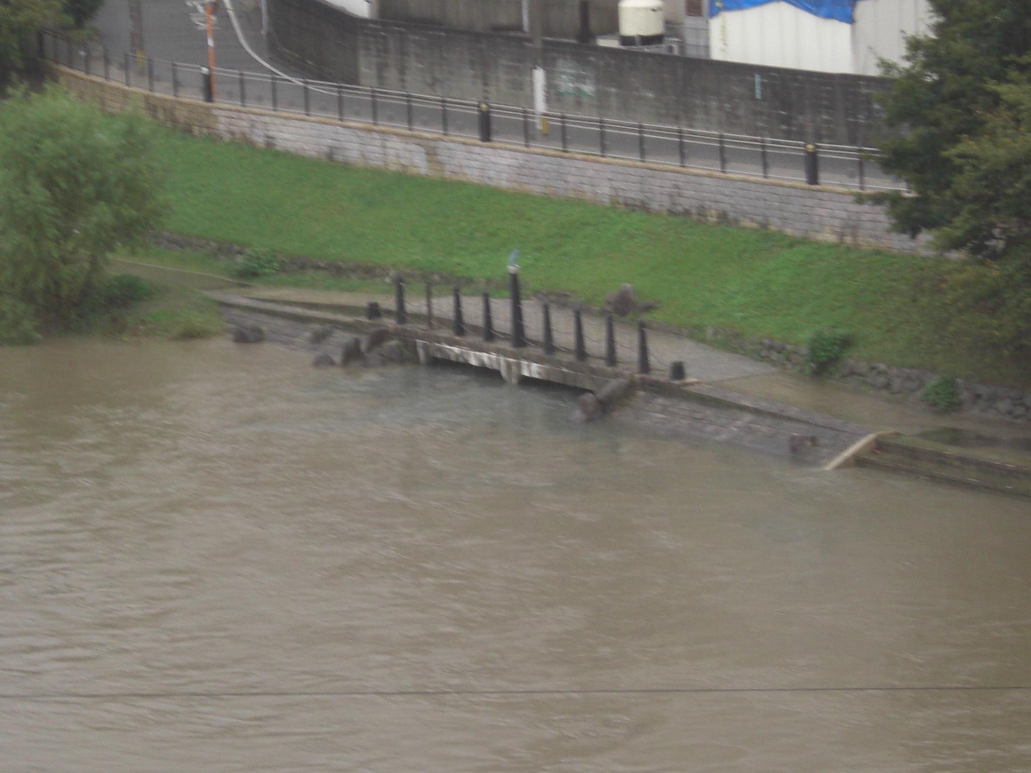 福岡 NOW 台風3