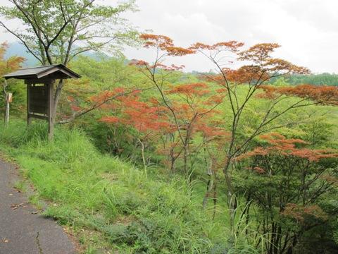 亀山2 042