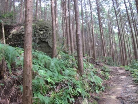 亀山2 047