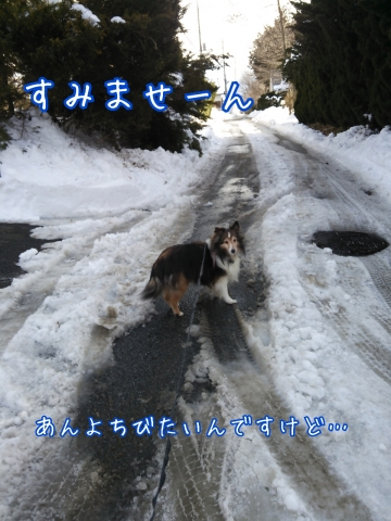 2014-02-13-15-41-15_deco.jpg