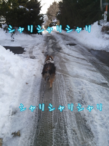 2014-02-13-15-42-10_deco.jpg
