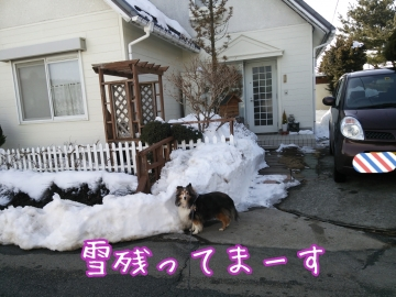 2014-02-13-15-44-59_deco.jpg