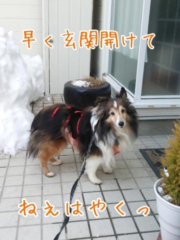 2014-02-24-17-49-50_deco.jpg