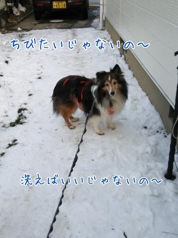 2014-02-24-17-51-13_deco.jpg
