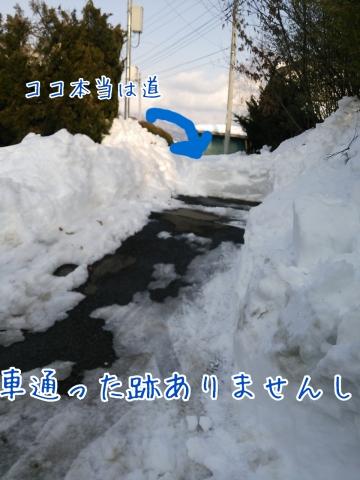 2014-02-24-19-25-38_deco.jpg