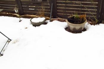 積雪 今日