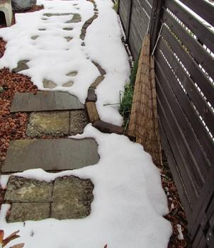 積雪 裏庭