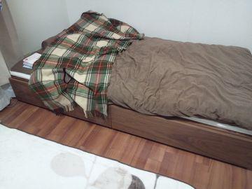 お気に入りベッド