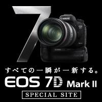 7dmk2sp.jpg