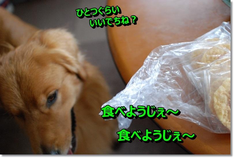 $RJ33HMY.jpg