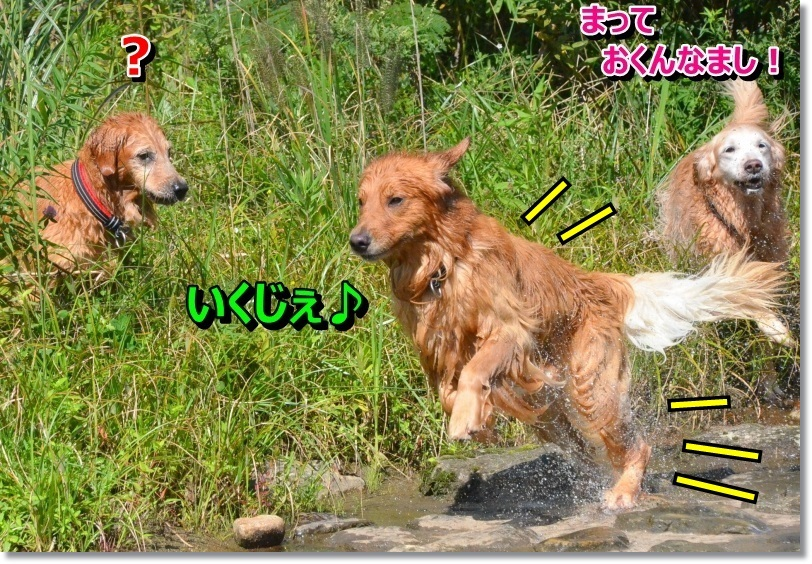 DSC_0620_20140925004859adf.jpg