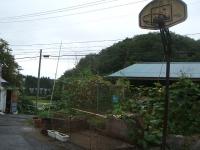 2014-08-16-001.jpg
