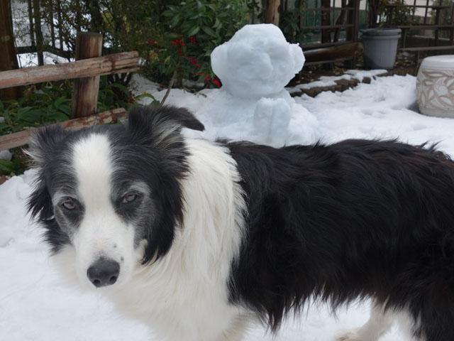 雪ダルマ作りました
