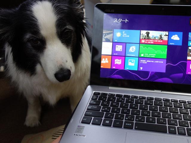 Windows8として使用