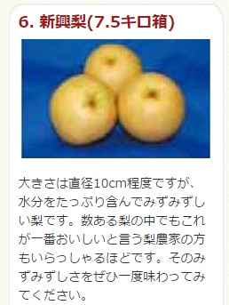鳥取県南部町 新興梨7kg