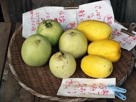 果物20140830