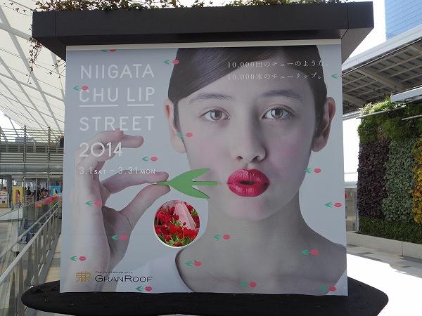 2014-3-24東京駅 (2)