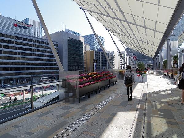 2014-3-24東京駅 (6)
