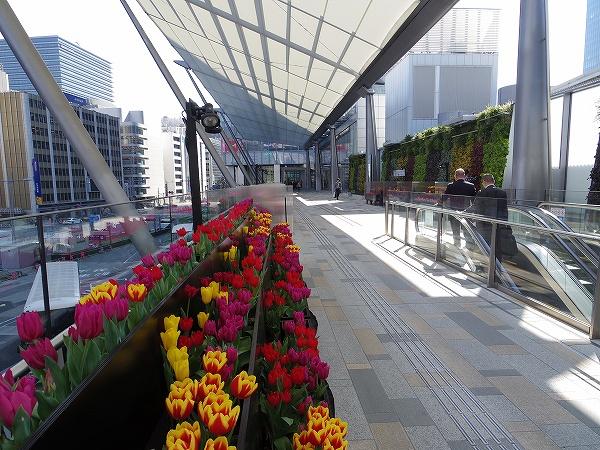 2014-3-24東京駅 (8)