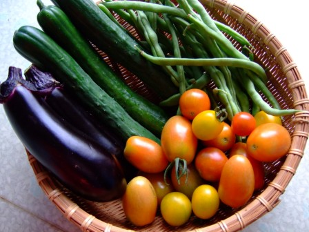 井上さんの野菜