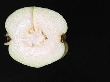 タイりんご
