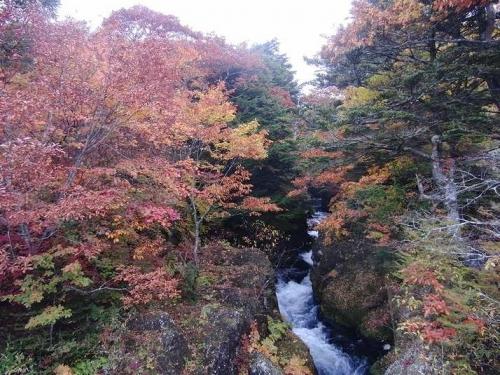 2014-10-01-5520.jpg