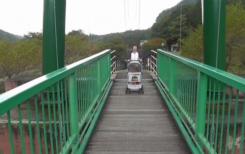 もみじ大吊り橋