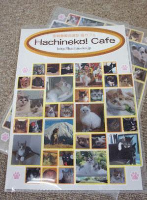 hachinekocafe_crearhorder0.jpg