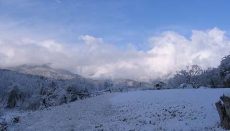 H260406雪のアルプス