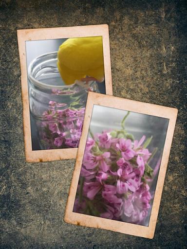 PicsArt_13.jpg