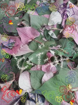 PicsArt_1399605235945.jpg