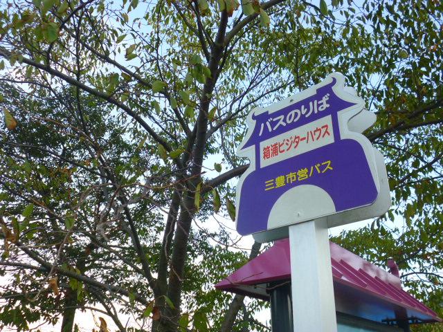 バス停のデザインが竜宮城なんです