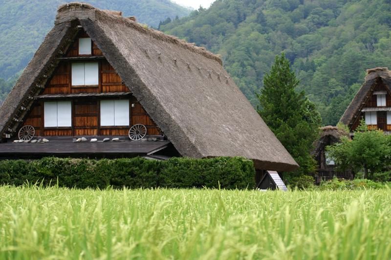 白川郷の夏は、まだまだ終わらない! お盆休みのピークをずらして ちょっと遅めの夏休み旅行を満喫 ③