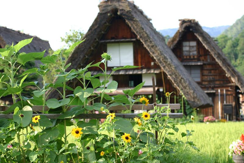 白川郷の夏は、まだまだ終わらない! お盆休みのピークをずらして ちょっと遅めの夏休み旅行を満喫 ⑥