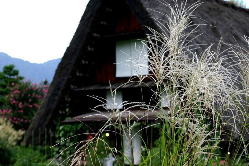 この夏休み最後の思い出づくりを応援する飛騨 白川村から ②