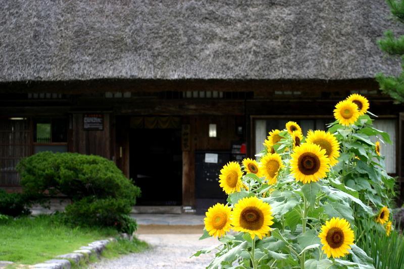 この夏休み最後の思い出づくりを応援する飛騨 白川村から ⑤