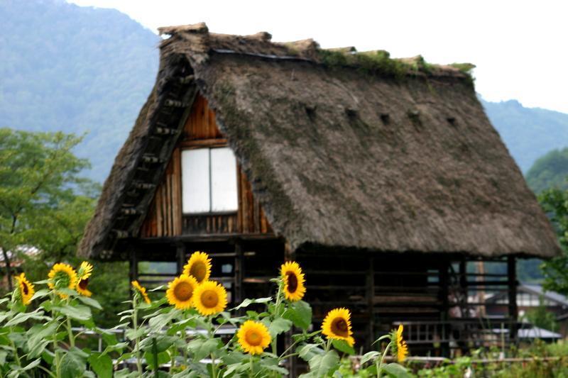 この夏休み最後の思い出づくりを応援する飛騨 白川村から ⑥