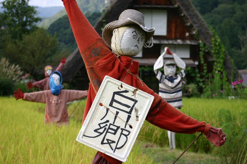ファミリー、カップル、グループで初秋の旅に出かけよう!世界遺産 白川郷 ③