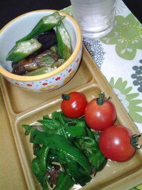 もらいもん野菜で