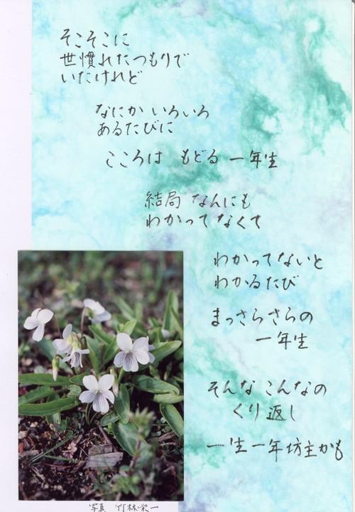 Photo_209