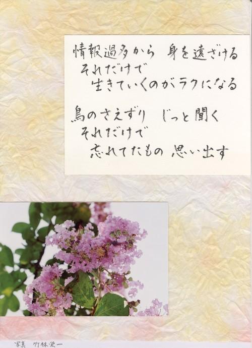 Photo_208