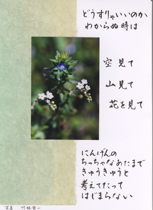 Photo_202