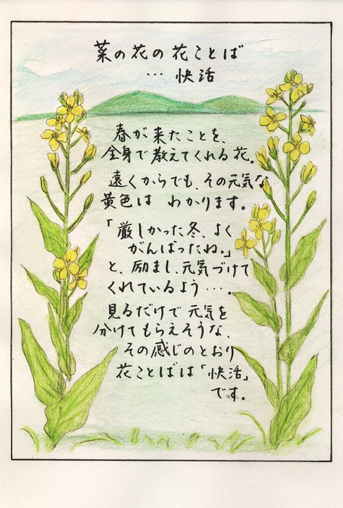 Photo_69