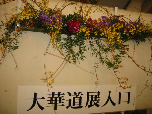 20101105_img_7247