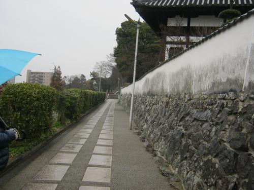 2011_242