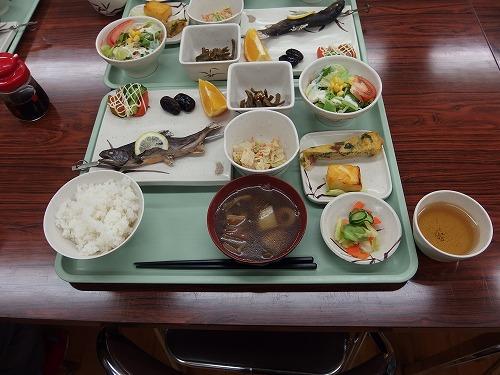 20141010_oze-028.jpg