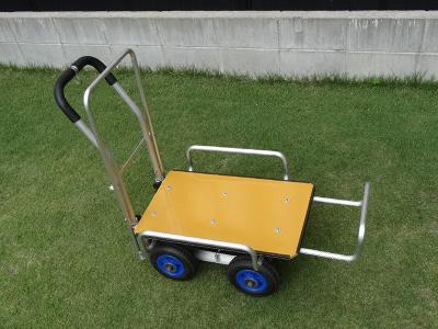 Cart-04.jpg
